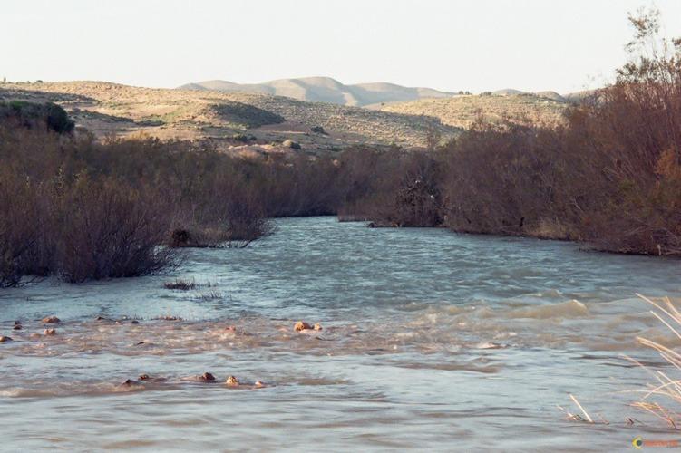 la-fleuve-de-oued-moulouya-visoterra-77450