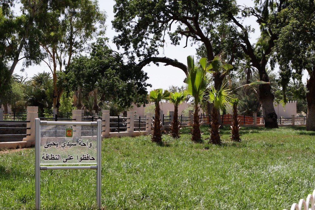 L'Oasis de Sidi Yahya